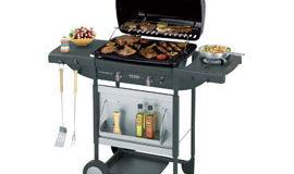 Recensione Campingaz Texas Revolution Grill Barbecue a Gas