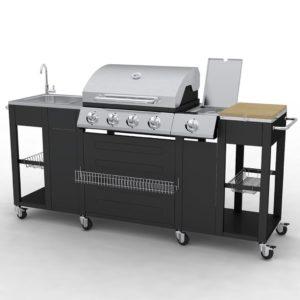 VidaXL 40426 Barbecue Zona cottura Gas 2900W