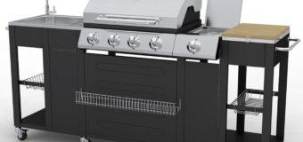 Recensione VidaXL 40426 Barbecue Zona cottura Gas 2900W